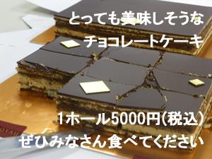 チョコレートケーキ5000円